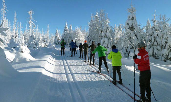 Klasse 7e:  Ski-Langlauf-Fahrt
